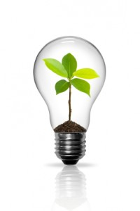 Light bulb with soil and small plant growing inside