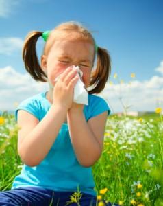 Allergy Alleviation